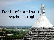 Daniele Salamina Contest